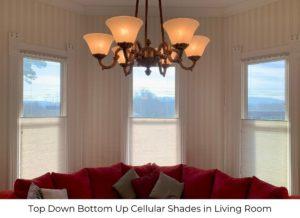 cellular_shades_living_room